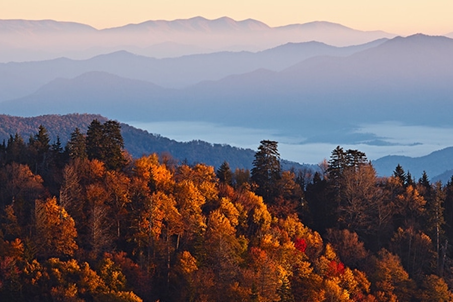 Tennessee | Featured Image